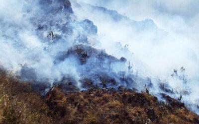 Más de 100 incendios y conatos han sido atendidos en Bucaramanga en esta temporada seca