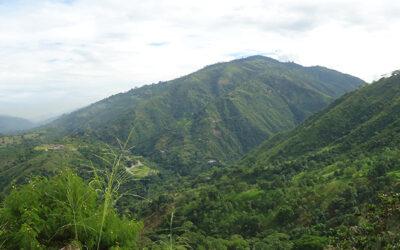 Con compra de terrenos, Alcaldía prioriza preservar el agua de los bumangueses