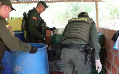 Contundentes y estratégicos golpes al microtráfico en Bucaramanga
