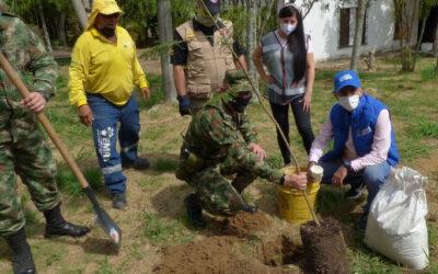 Con la siembra de más de mil árboles la Alcaldía de Bucaramanga y el Ejército rindieron homenaje al Día Mundial de la Biodiversidad