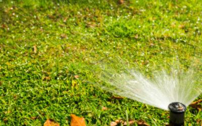105 parques de Bucaramanga cuentan con sistemas de riego que benefician el mantenimiento
