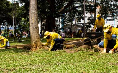 La 'revolución verde' llegó al Parque Antonia Santos