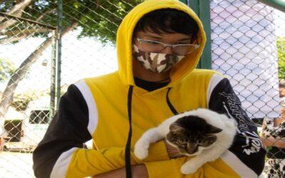 No permitir que la rabia llegue a Bucaramanga es el propósito de la jornada de vacunación canina y felina en el barrio Canelos