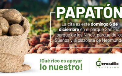 Bucaramanga se suma a la 'Papatón' para apoyar a productores de la región