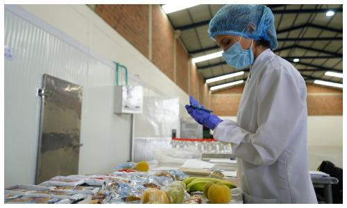 Hoy inicia la octava entrega del Programa de Alimentación Escolar, PAE